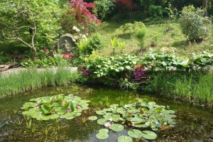 Garten Haus Tao